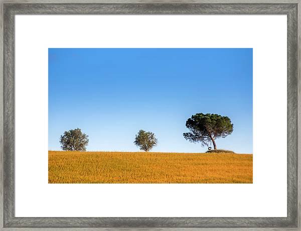 Val D'orcia Landscape Framed Print