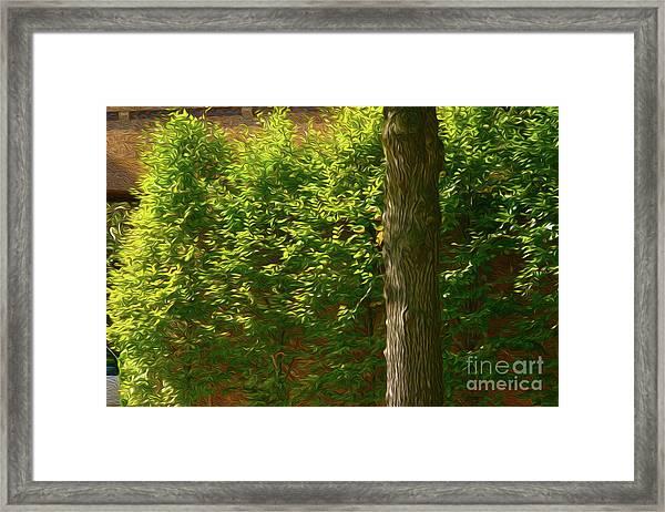 9-24-2057a Framed Print
