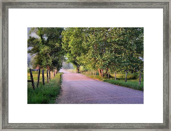 Morning Light Sparks Lane  Framed Print