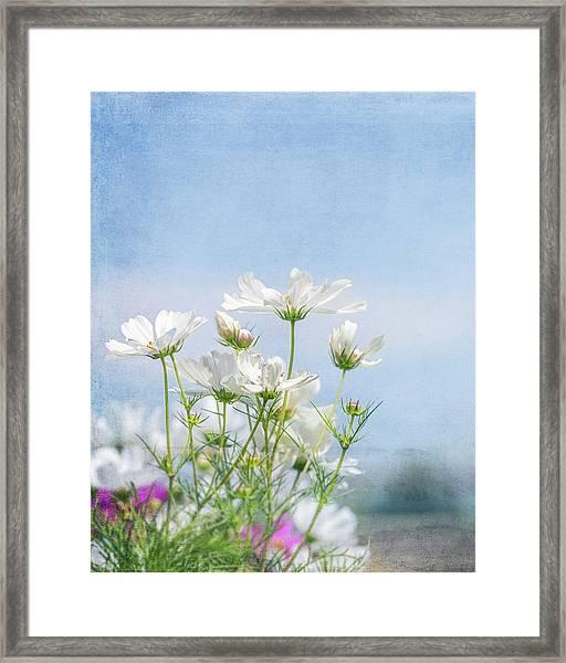 A Beautiful Summer Day Framed Print