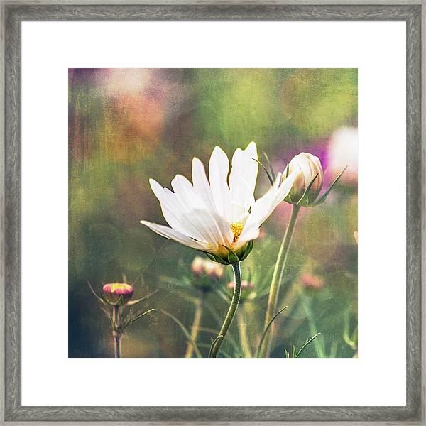 A Bouquet Of Flowers Framed Print