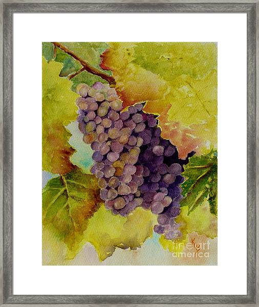 A Bunch Of Grapes Framed Print