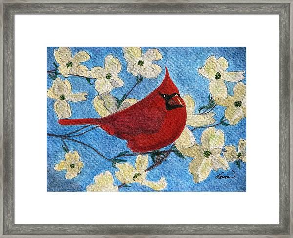 A Cardinal Spring Framed Print