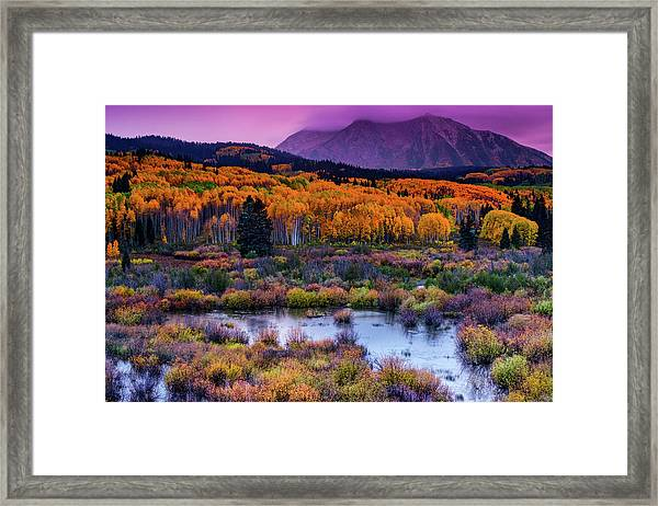 Framed Print featuring the photograph A Colorado Fall Along Kebler Pass by John De Bord