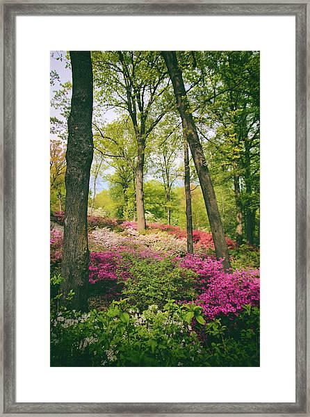 A Colorful Hillside Framed Print