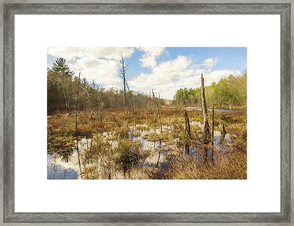 A Connecticut Marsh Framed Print