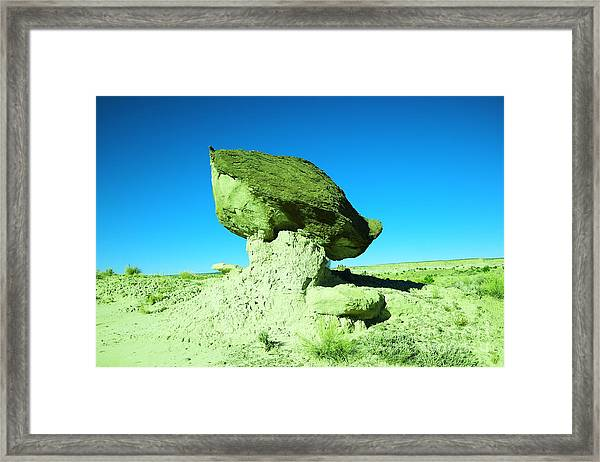 A Crooked Toad Stool New Mexico Framed Print