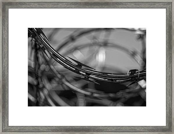 A Dangerous Beauty Framed Print by Robert Ullmann