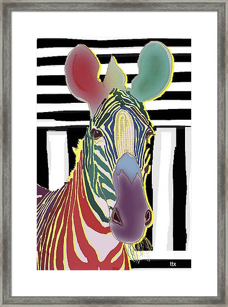 A Different Zebra Framed Print