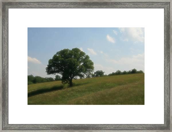 A Dreamy Day Framed Print