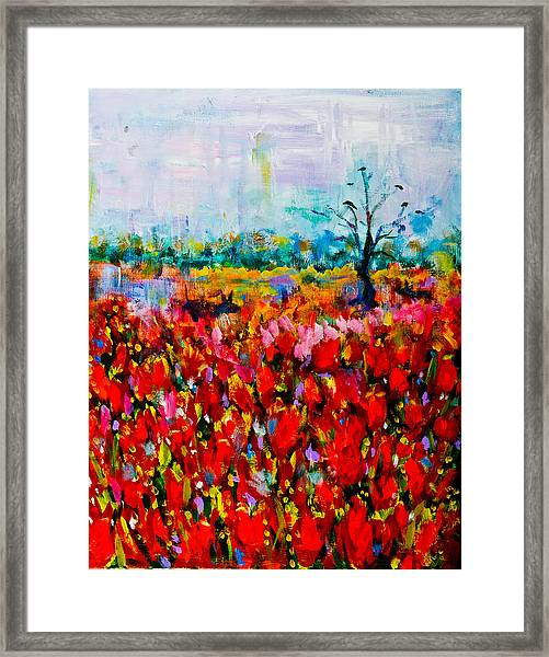 A Field Of Flowers # 2 Framed Print