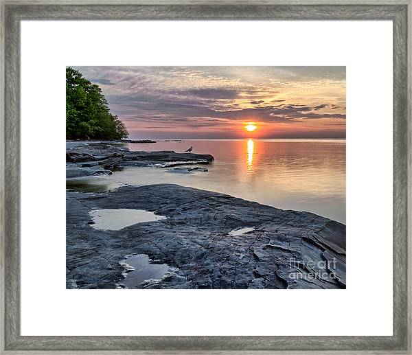 A Flat Rock Sunset With Seagull Framed Print