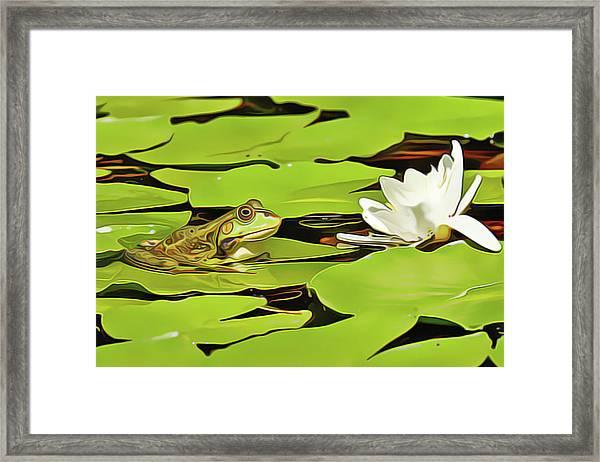 A Frog's Peace Framed Print