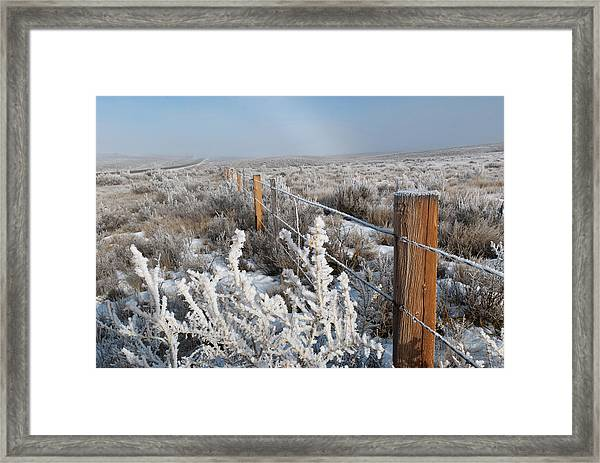 A Frosty And Foggy Morning On The Way To Steamboat Springs Framed Print