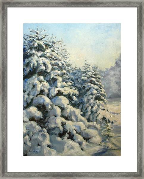 A Frosty Morning Framed Print