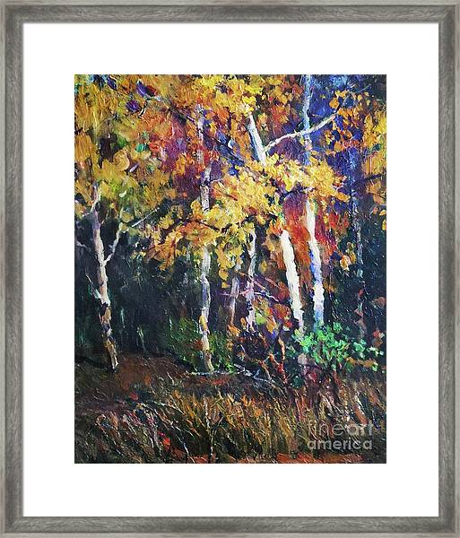 A Glance Of The Woods Framed Print
