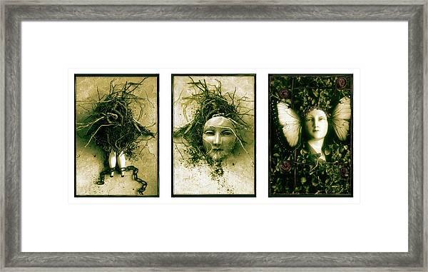 A Graft In Winter Triptych Framed Print