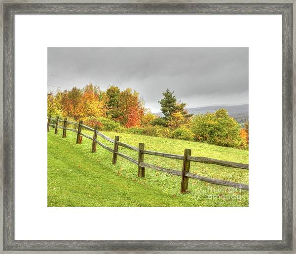 A Highland Forest Autumn Framed Print