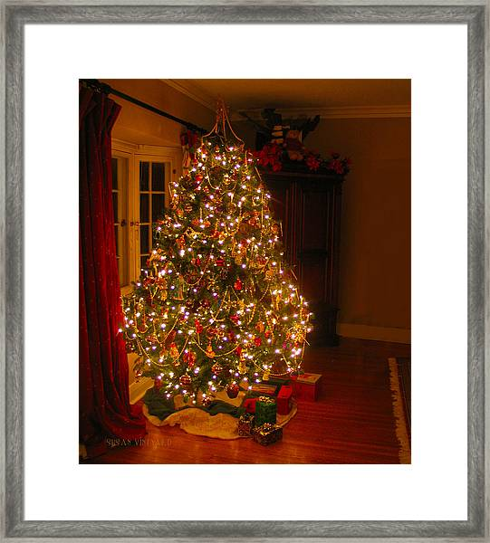 A Jewel Of A Christmas Tree Framed Print