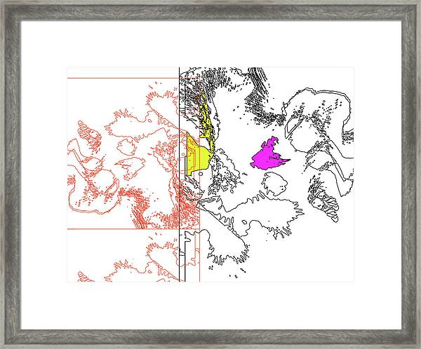 A Map Of Irises Framed Print