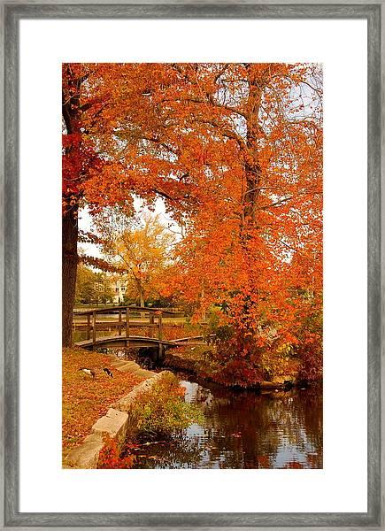 A Morning In Autumn - Lake Carasaljo Framed Print