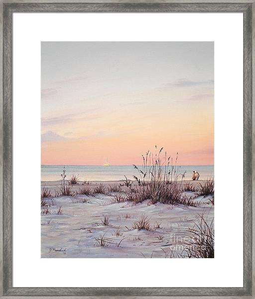 A Morning Stroll Framed Print