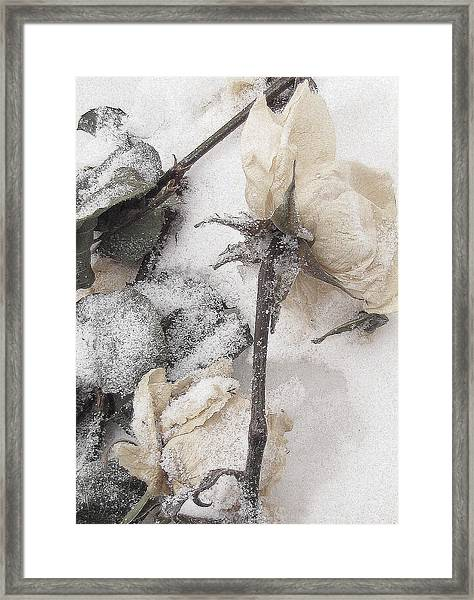 A Mystery Made Of Truth Framed Print