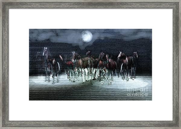 A Night Of Wild Horses Framed Print