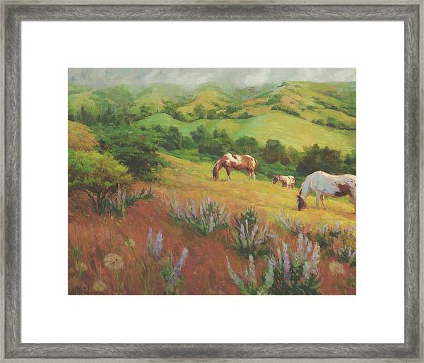 A Peaceful Nibble Framed Print