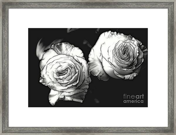 A Perfect Pair Bw Framed Print