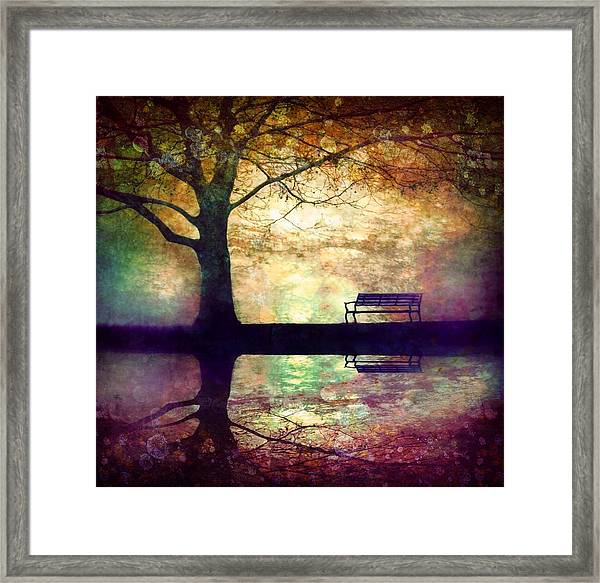 A Place To Rest In The Dark Framed Print