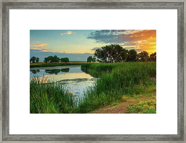 Framed Print featuring the photograph A Portrait Of Summer by John De Bord