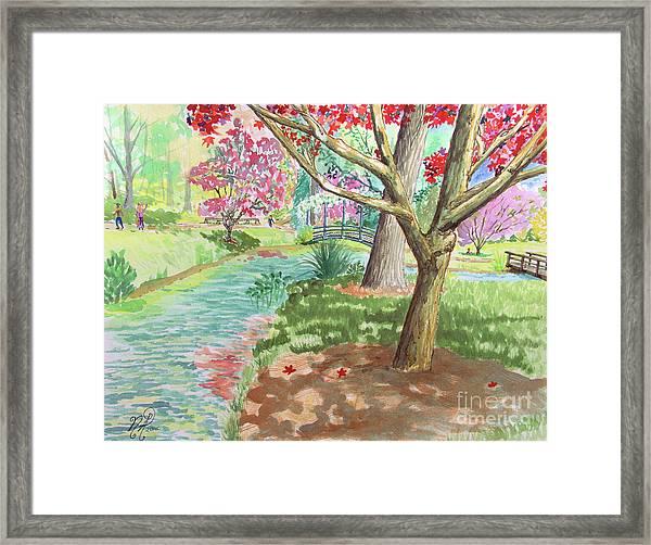 A Quiet Stroll In The Japanese Gardens Of Gibbs Gardens Framed Print