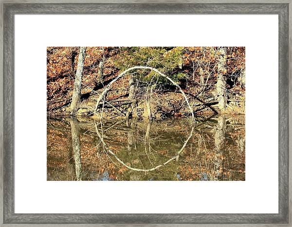 A Ring On The Pond In Fall Framed Print