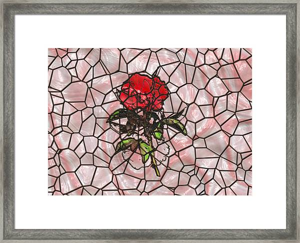 A Rose On Stained Glass Framed Print