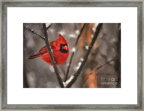 Framed Print featuring the digital art A Spot Of Color by Lois Bryan