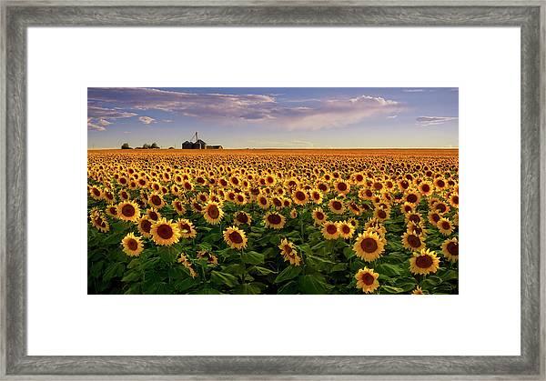 Framed Print featuring the photograph A Summer Evening In Rural Colorado by John De Bord