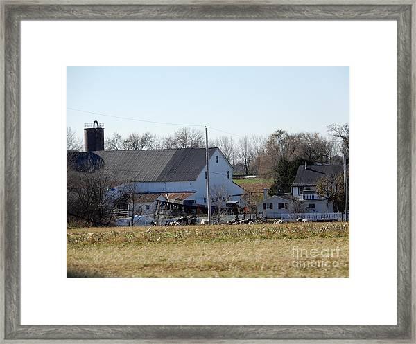 A Sunny November Afternoon Framed Print