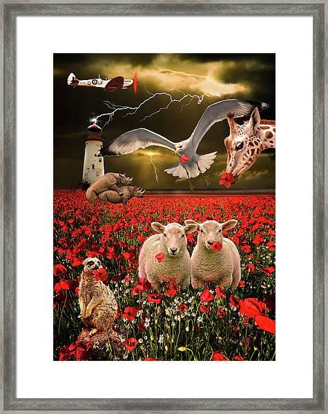 A Very Strange Dream Framed Print