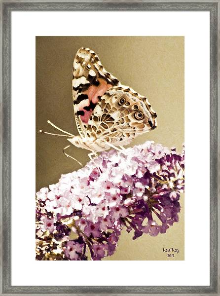 A Visit From Pat Framed Print