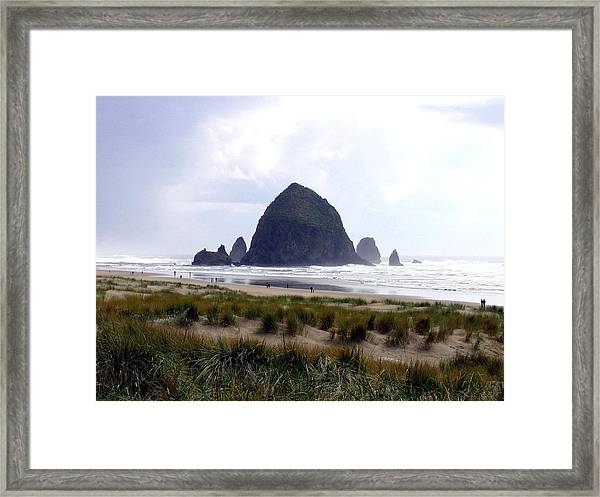 A Walk In The Mist Framed Print