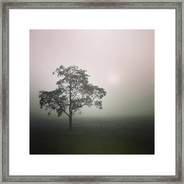 A Walk Through The Clouds #fog #nuneaton Framed Print