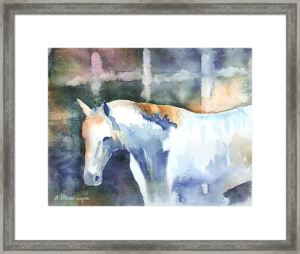 A White Horse Framed Print