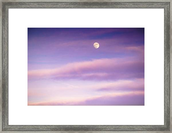 A White Moon In Twilight Framed Print