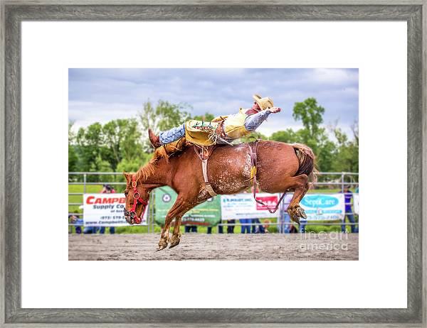 A Wild Ride Framed Print