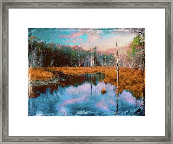 A Wilderness Marsh Framed Print