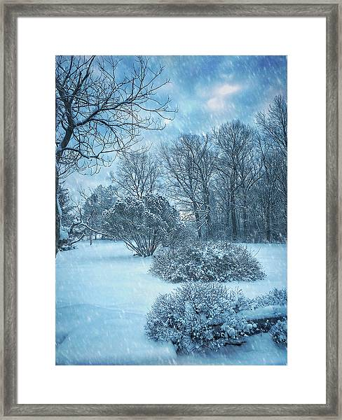 A Winters Tale Framed Print