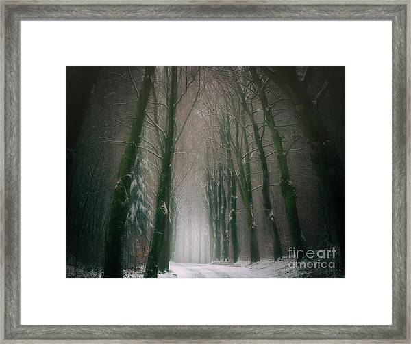 A Woodland Fantasy Framed Print