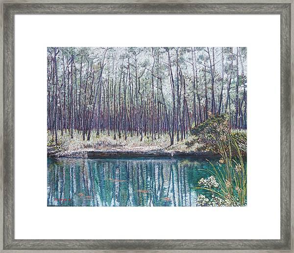 Abaco Blue Hole Framed Print