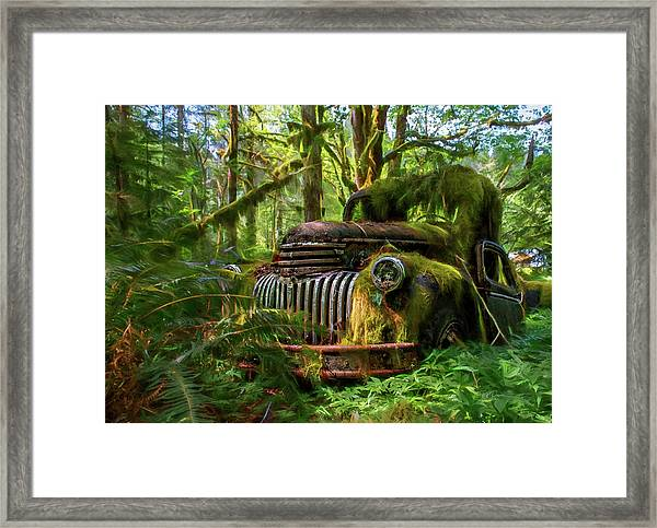 Abandoned In Forest Framed Print